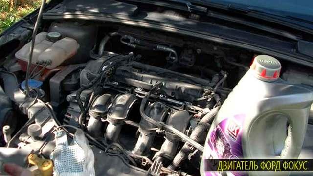 Какое масло лучше заливать в двигатель 1.4 и 1.6 Форд Фьюжн