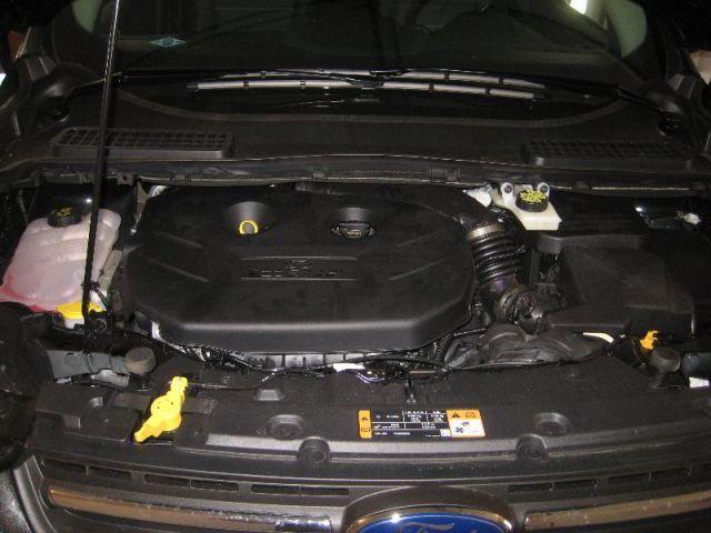 Какое масло лучше заливать в двигатель Форд Куга 2.5