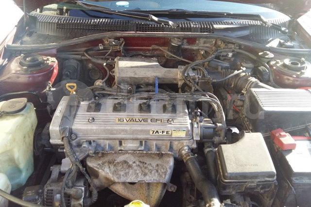 Сколько литров масла нужно заливать в двигатель Тойота Карина 1.6, 1.8, 2.0