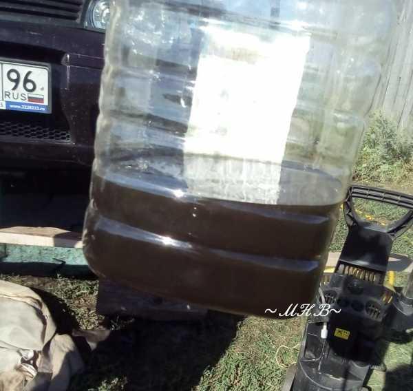 Какое масло лучше заливать в двигатель Фиат Альбеа 1.4