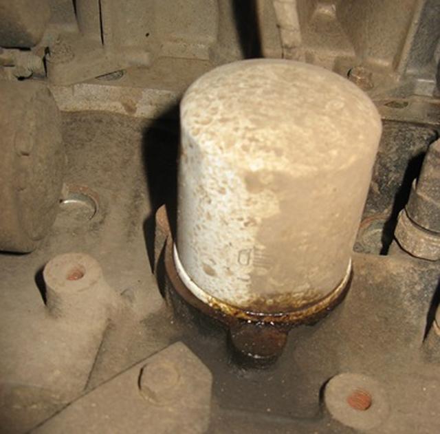 Сколько литров масла нужно заливать в двигатель Ниссан Тиида