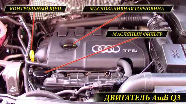 Сколько литров масла нужно заливать в двигатель Ауди q5 2.0, 3.0, 3.2