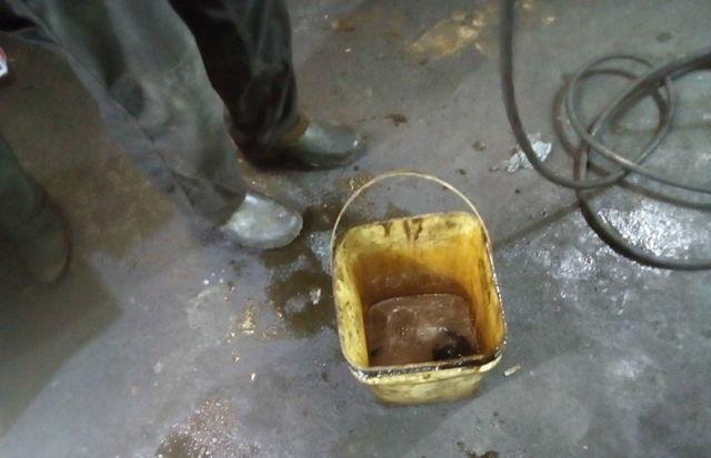 Какое масло лучше заливать в АКПП Ниссан Микра